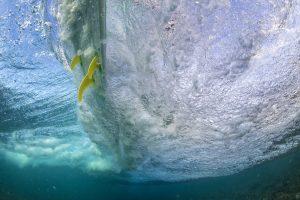 K4 fins underwater 13