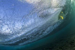 K4 fins underwater 8 by Si Crowther